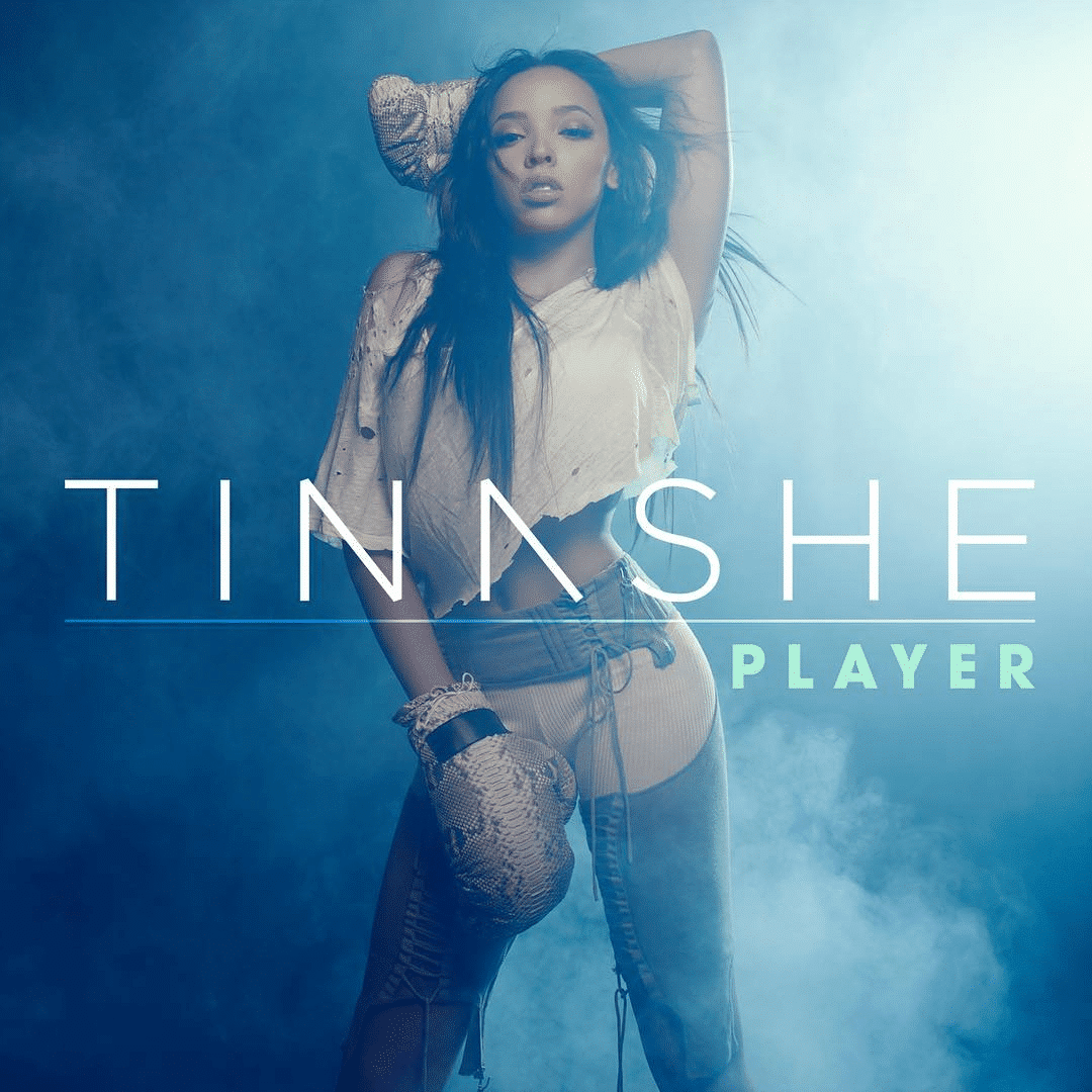 Tinashe-Player-2015-Official-Cover