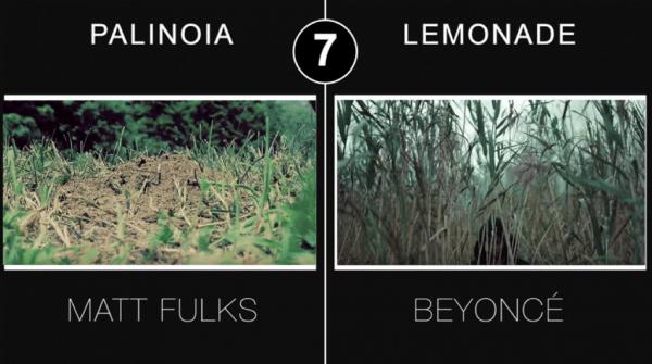 beyonce-leomonade-palinoia-6