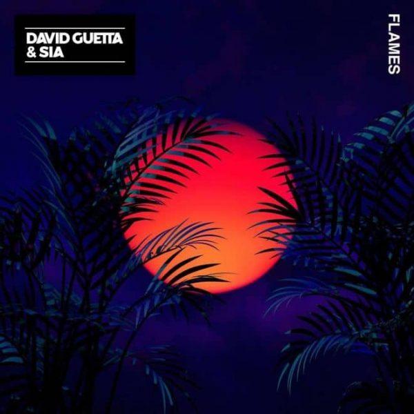 Traduzione Testo Flames David Guetta Sia