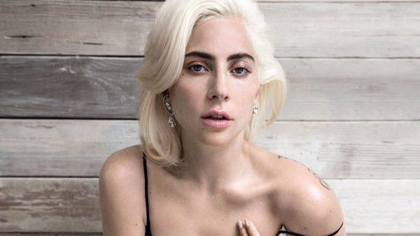 Gaga Stupid Love